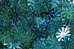 11 ágú világoskék virág