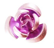 Alloy rose, orchid